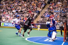 national-lacrosse-league-game-between-the-toronto-rock-and-the-calgary-roughnecks_26195482308_o