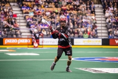 national-lacrosse-league-game-between-the-toronto-rock-and-the-calgary-roughnecks_26195526148_o copy