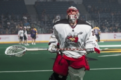 Calgary Roughnecks at San Diego Seals 1.18.19